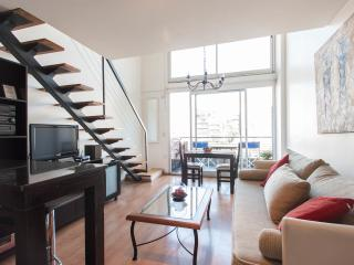Modern and luminous apartment in Palermo Hollywood - Buenos Aires vacation rentals