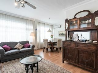 Large 3 bdr apt near Blue mosque, Sultanahmet. - Istanbul vacation rentals