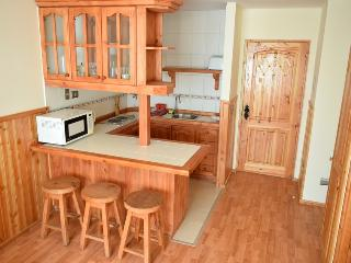 Comfy apartment in Pucon, 2-4 people, with pool - Pucon vacation rentals