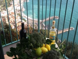 Beautiful 2 bedroom House in Amalfi with Dishwasher - Amalfi vacation rentals