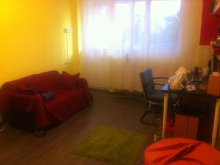 1 bedroom Condo with Internet Access in Bucharest - Bucharest vacation rentals