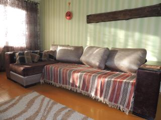 1 bedroom Condo with Television in Pinsk - Pinsk vacation rentals