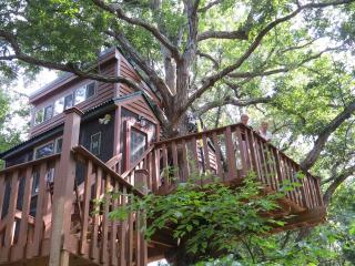 White Oak Tree House in the Illinois Ozarks - Karbers Ridge vacation rentals