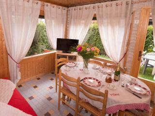 Nice House with Internet Access and Long Term Rentals Allowed (over 1 Month) - Morzine-Avoriaz vacation rentals