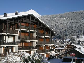 Mountain Xtra Le Moufflon - Morzine-Avoriaz vacation rentals
