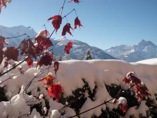 Winter or Summer, ski time and sunshine, family... - Villars-sur-Ollon vacation rentals