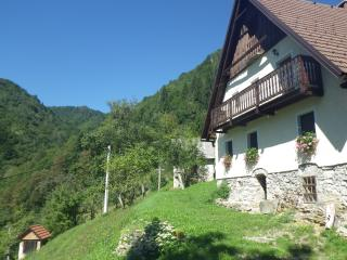Farmhouse Apartment - Cerkno vacation rentals