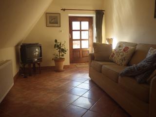 2 bedroom Condo with Iron in Cerkno - Cerkno vacation rentals