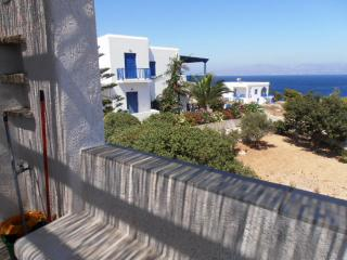Bright House with Refrigerator and Washing Machine in Piso Livadi - Piso Livadi vacation rentals