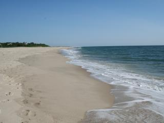 Stunning Ocean Front Luxury Home - East Orleans vacation rentals