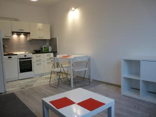 Nice, Zen style apartment in Krakow - Krakow vacation rentals