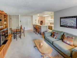Crestview #49 - Mammoth Lakes vacation rentals