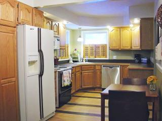 3 bedroom House with Internet Access in Gaylord - Gaylord vacation rentals