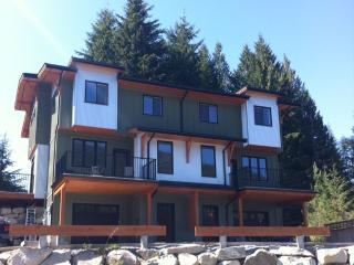 Nelson Morning Mountain Vacation Rental - Nelson vacation rentals