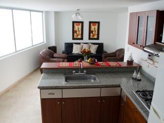Apartamento amoblado de 1 a 3 personas - Pereira vacation rentals