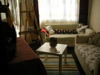 1 bedroom Apartment with Washing Machine in Istanbul - Istanbul vacation rentals