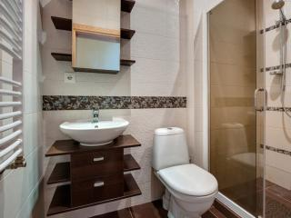 Baltic Deluxe Apartments - Kaunas vacation rentals