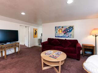 BRIGHT & SPACIOUS ONE BEDROOM APT - Oakland vacation rentals