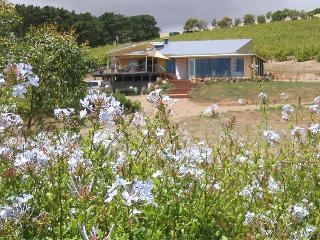 The Blue Grape Vineyard Accommodation -Yellow Room - Willunga vacation rentals
