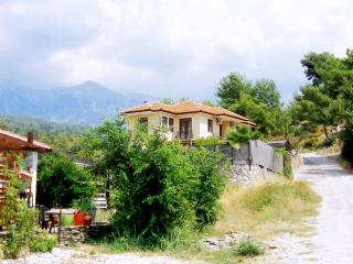 Rural Experience! Unique Private Pool Countryside villa - Saklikent vacation rentals