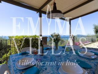 Villa Agnese 6+1 - Liguria vacation rentals