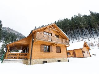Beautiful Chalet Bear WILI HUNTER - Donovaly vacation rentals