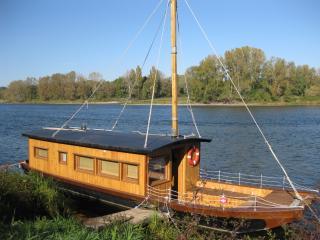 Loire Valley Cabane sur la Loire - Boat cabin - Azay-le-Rideau vacation rentals