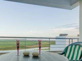 Sea view terrace, 2 bedrooms (118) - Conil de la Frontera vacation rentals