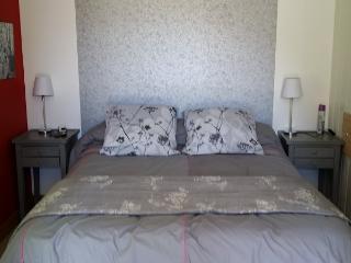Le solo, jolie appartement à Lyon 5éme. - Lyon vacation rentals