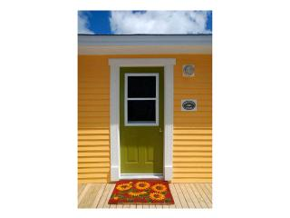 Bright 2 bedroom Cottage in Witless Bay - Witless Bay vacation rentals
