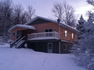 Ski Chalet 5 min to mount Owl's Head - Mansonville vacation rentals