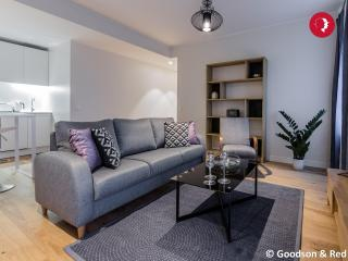 Stunning 2 Bed Apartment in the Centre of Tallinn - Tallinn vacation rentals