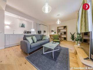 Professionally decorated 2 Bed Apartment in the Centre of Tallinn - Tallinn vacation rentals