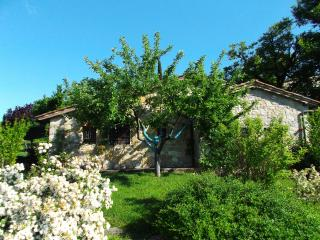 Enchanting cottage for romantic holidays - Radda in Chianti vacation rentals