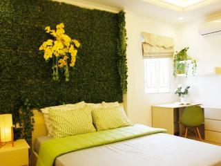 Green Home @Ben Thanh Market - Ho Chi Minh City vacation rentals