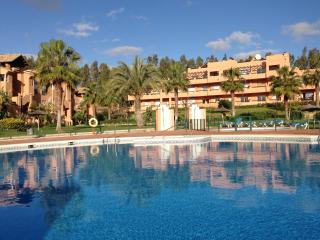 Poolside Casares Apartment|Large Terrace|A/C|WiFi - Casares vacation rentals