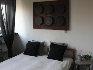 Fatima Hendrix apartment - Kaunas vacation rentals