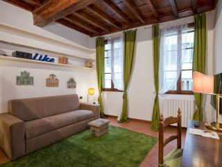 Apartment in the city center of Florence. 2 sleeps - Florence vacation rentals