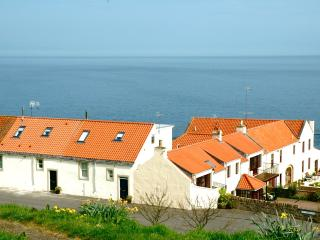 2 bedroom Cottage with Internet Access in Cellardyke - Cellardyke vacation rentals