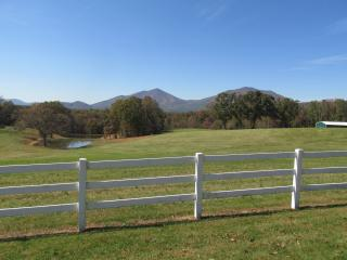What A View Country Farm House - Bedford vacation rentals
