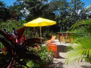 Tout le confort en pleine nature - Basse-Terre Island vacation rentals