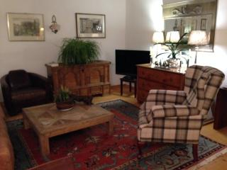 (2) first class apartment - Salzburg vacation rentals