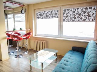 Cozy apartment - Kaunas vacation rentals
