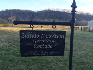 NEW!! Buffalo Mountain Getaway - Willis vacation rentals