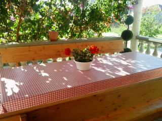 Newly decorated Apartment Luka - Bibinje vacation rentals