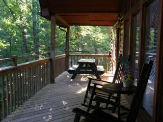 Catch Cabin Fever, 1.5 miles to Dolly Wood - Pigeon Forge vacation rentals