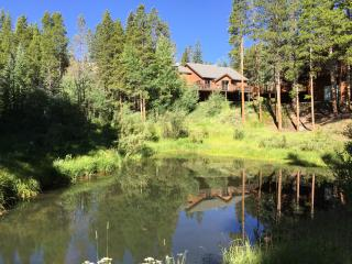 MOUNTAIN MEADOW LODGE, SKI IN, SKI OUT, SLEEPS 12 - Breckenridge vacation rentals