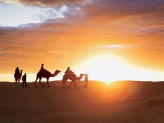 notre bivouc  est  localiser  dans  le  désert - Zagora vacation rentals
