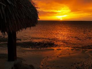 Beach side with sunset bungalow - Haapiti vacation rentals