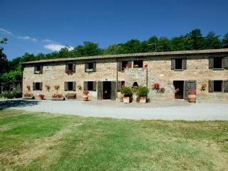 Beautiful 7 bedroom Radicofani House with Internet Access - Radicofani vacation rentals